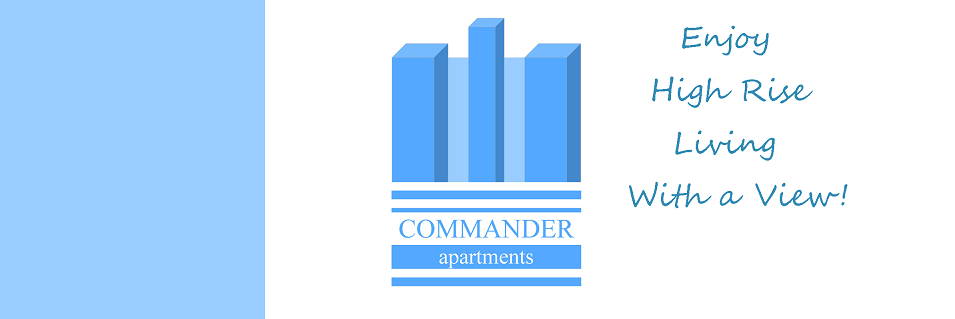 Commander_web_logo_8